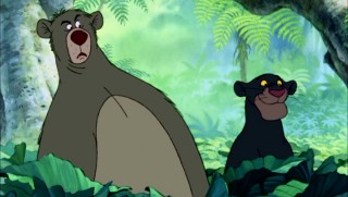 Baloo and Bagheera